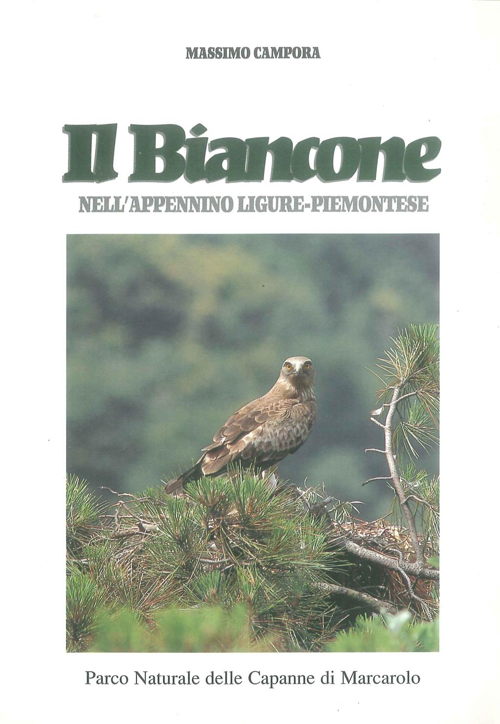 Libro Il Biancone